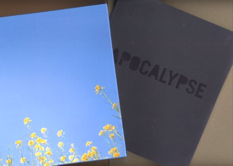 9780900946868: Apocalypse. Beauty and horror in contemporary art