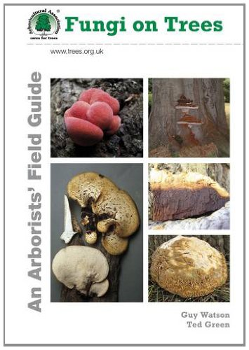 9780900978555: Fungi on Trees: An Arborists' Field Guide