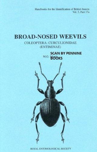 9780901546791: Broad-nosed weevils: Coleoptera: curculionidae (entiminae) (Handbooks for the identification of British Insects)