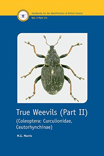 9780901546876: True Weevils: Coleoptera, Curculionidae, Ceutorhynchinae Pt. 2 (Handbooks for the Identification of British Insects)