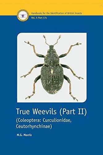 9780901546876: True Weevils: Coleoptera, Curculionidae, Ceutorhynchinae Pt. 2