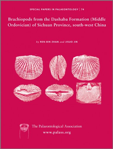 Brachiopods from the Dashaba Formation (Middle Ordovician) of Sichuan Province, South-West China (...