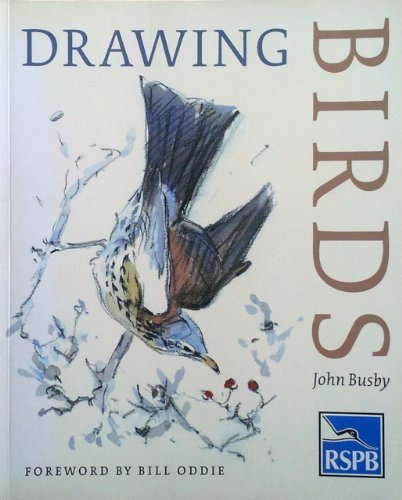 9780903138215: Drawing Birds: An R.S.P.B.Guide (Draw Books)
