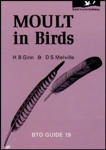 9780903793025: Moult in birds (BTO guide)