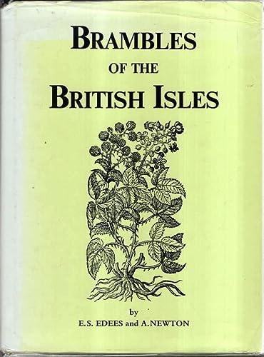 9780903874205: Brambles of the British Isles