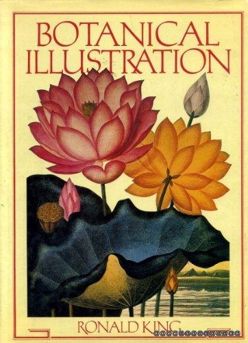 9780904069303: Botanical Illustration