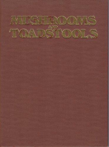 9780904681437: Mushrooms Adn Toadstools