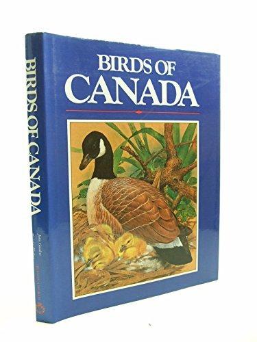 9780905895390: Birds of Canada - AbeBooks - Maurice Pledger