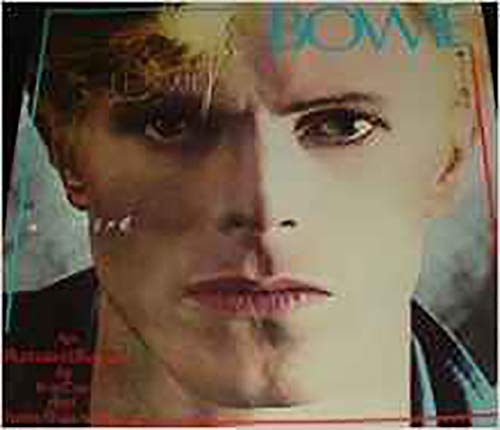 9780906008256: David Bowie: An Illustrated Record
