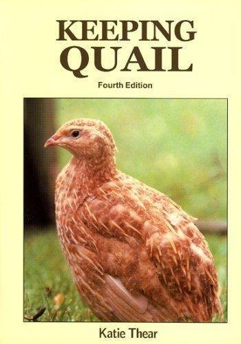 9780906137383: Keeping Quail: A Guide to Domestic and Commercial Management