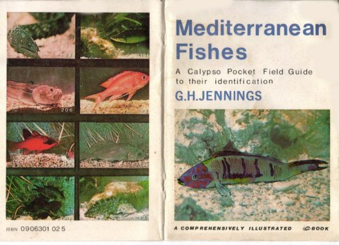 9780906301029: Mediterranean Fishes: A Pocket Field Guide to Their Identification