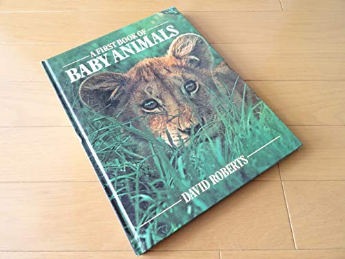 A First Book of Baby Animals: David Roberts