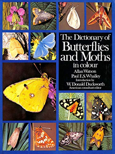 9780907408628: Dictionary of Butterflies and Moths