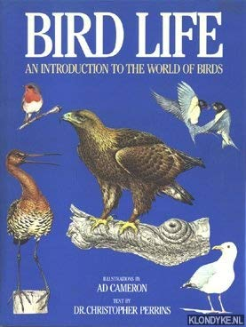 Bird life: An introduction to the world: AD CAMERON
