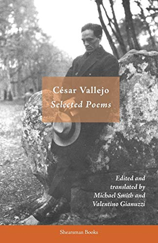 9780907562993: Selected Poems