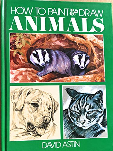 9780907874003: how to Paint & Draw Animals