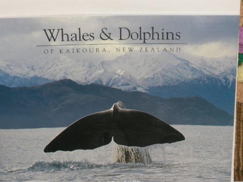9780908802142: Whales and Dolphins of Kaikoura, New Zealand