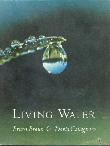 Living water: Ernest Braun