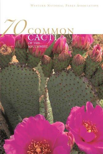 70 Common Cacti of the Southwest: Pierre C. Fischer