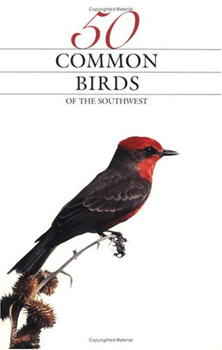 50 Common Birds of the Southwest (Paperback)