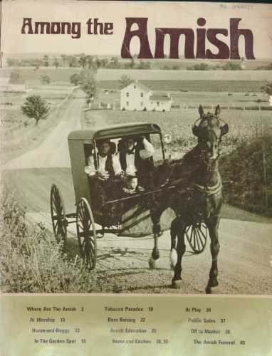 Among the Amish: Melvin J. Horst,
