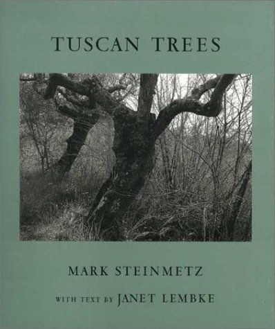 Tuscan Trees: Mark Steinmetz