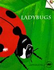 9780912511863: Ladybugs (Old Edition) (Great Explorations in Math and Science)