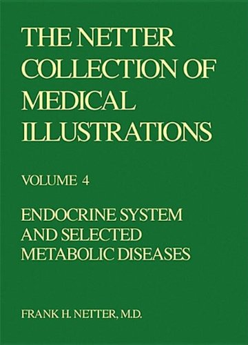 9780914168874: The Netter Collection of Medical Illustrations - Endocrine System, 1e (Netter Green Book Collection)