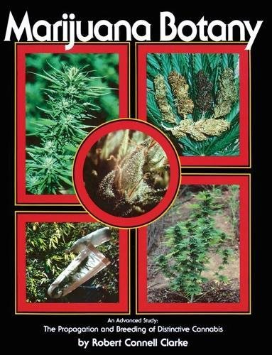 9780914171782: Marijuana Botany: An Advanced Study: The Propagation and Breeding of Distinctive Cannabis