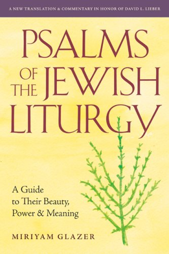 9780916219413: Psalms of the Jewish Liturgy: A Guide to Their Beauty, Power, and Meaning