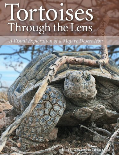 9780916251017: Tortoises Through the Lens: A Visual Exploration of a Mojave Desert Icon