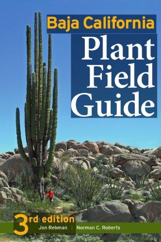 Baja California Plant Field Guide: Rebman; Jon P.; Roberts; Norman C.