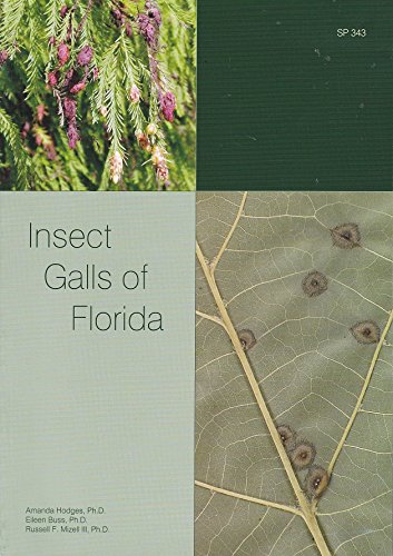 9780916287610: Insect Galls of Florida