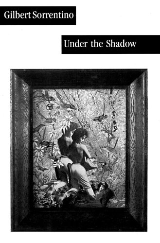 9780916583842: Under the Shadow