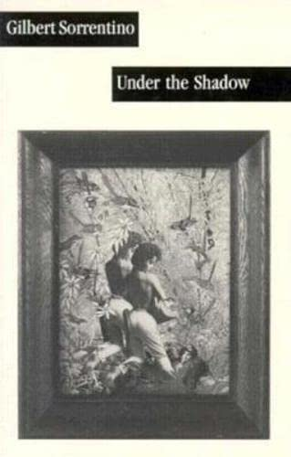 9780916583934: Under the Shadow (American Literature (Dalkey Archive))