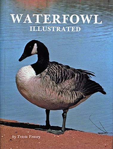 Waterfowl Illustrated: Veasey, Tricia
