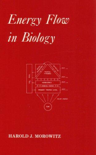 9780918024138: Energy Flow in Biology