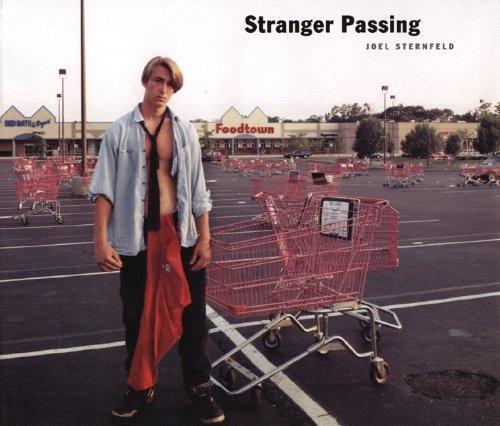 9780918471659: Stranger Passing.