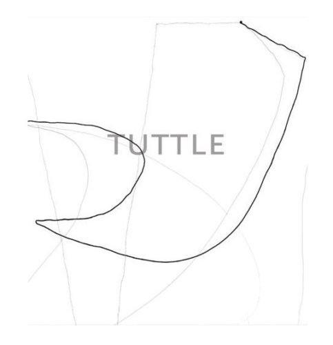 The Art of Richard Tuttle: Tuttle, Richard
