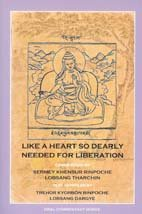 9780918753229: Like a Heart So Dearly Needed for Liberation (English, Multilingual and Tibetan Edition)