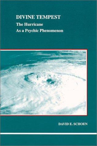 Divine Tempest (Studies in Jungian Psychology by Jungian Analysts): David E. Schoen