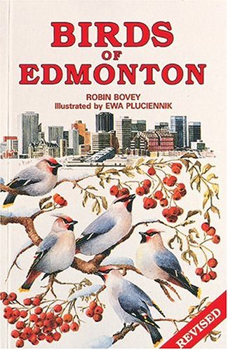 Birds of Edmonton: Robin Bovey