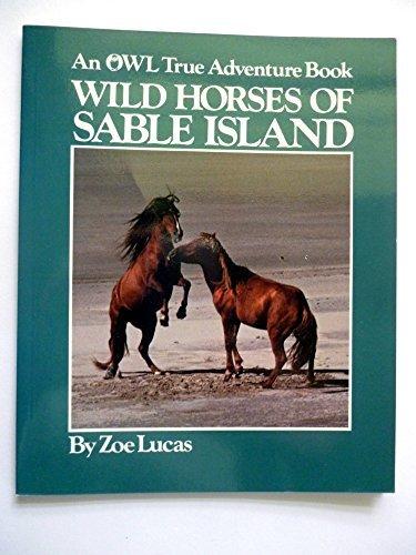 9780919872738: Wild Horses of Sable Island (An Owl True Adventure Book)