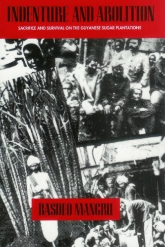 9780920661321: Indenture and Abolition: Sacrifice and Survival on the Guyanese Sugar Plantations