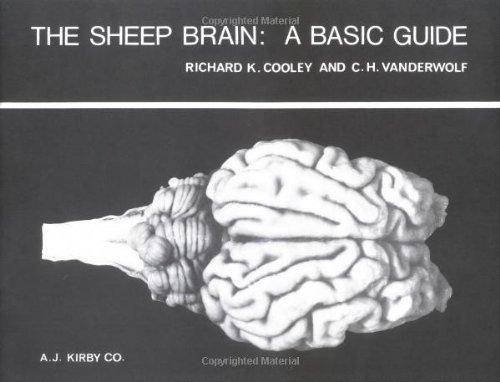 The Sheep Brain: A Basic Guide: Richard K Cooley;