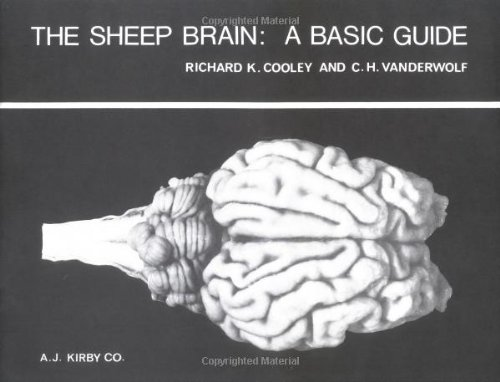 9780920700013: The Sheep Brain: A Basic Guide