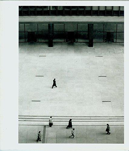 Mies van der Rohe: l'art difficile d'être simple: Lambert, Phyllis