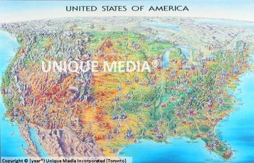 USA Laminated Map: Unique Media