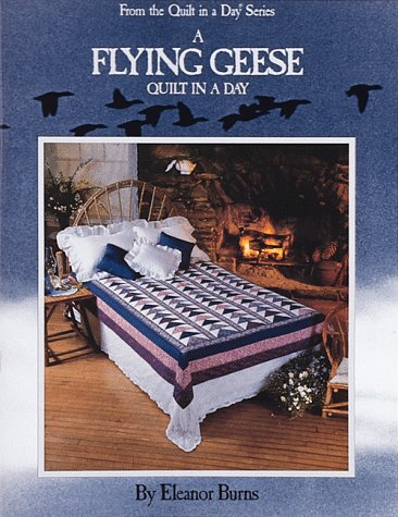 9780922705351: A Flying Geese Quilt in a Day