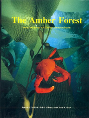9780922769018: Amber Forest: Beauty and Biology of California's Submarine Forests